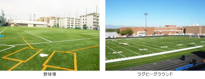 野球場/ラグビーグラウンド