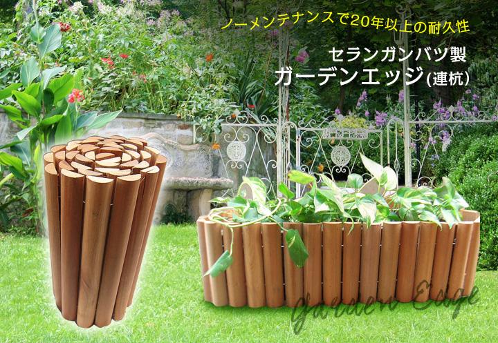 セランガンバツ製ガーデンエッジ(連杭)
