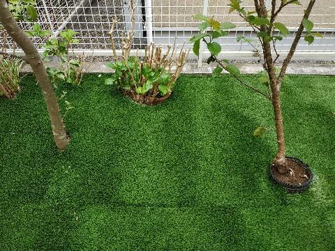 ハイブリッド人工芝の施工例