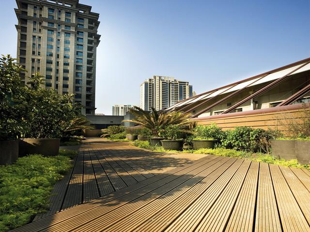 屋上庭園(上海)