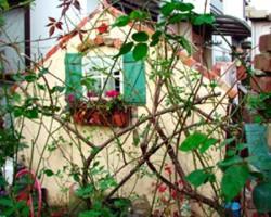 【施工後3】右から。手前の緑あふれる植木ともマッチしています。